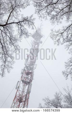 frozen telecommunication pillar between the frozen treetops