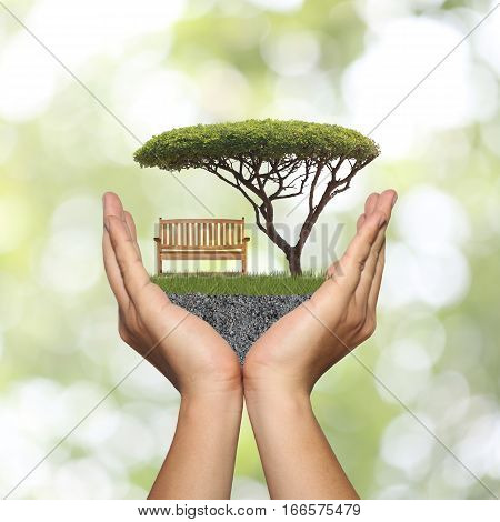 Wooden bench on green grass and have tree on man hand in concept of nature and relaxation on abstract green bokeh background.