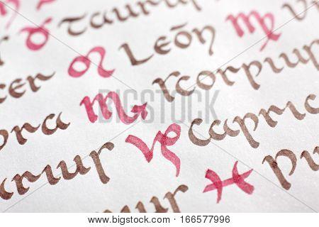 Detail of a handwritten zodiacal symbols. Uncial latin script.