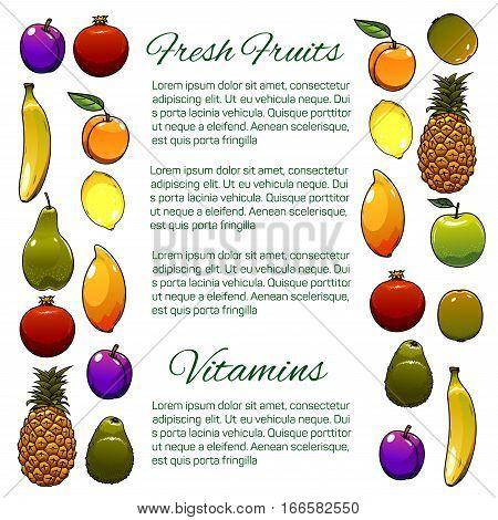 Fruits banner. Vector fresh farm organic fruit harvest of ripe pineapple, exotic mango, tropical kiwi and banana, pear or avocado, lemon, orange or tangerine, plum and banana red grape, juicy orange or tangerine, apricot, peach and pomegranate