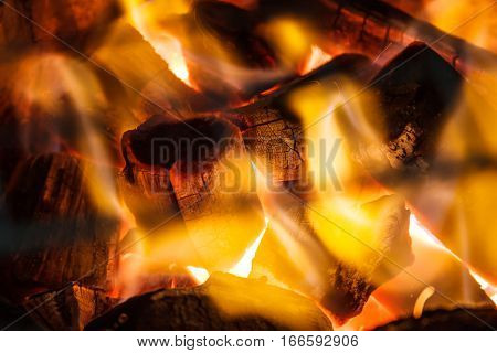 Conflagrant fire woods and decaying red coals background