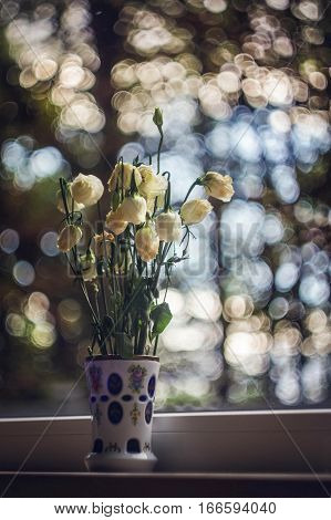a vase of flowers, white roses, a mirage, bouquets,  camera, tranquility
