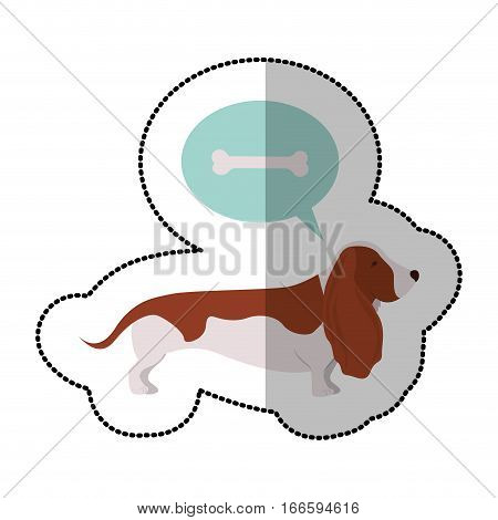 colorful image middle shadow sticker with Bassett hound dog thinking pet bone vector illustration