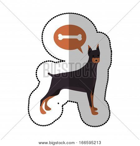 colorful image middle shadow sticker with doberman pinscher dog thinking bone vector illustration
