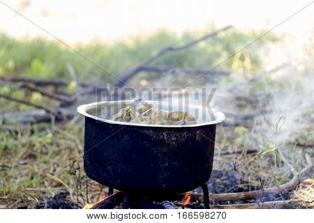 Boiled Chicken In A Pot Of Boiling Water