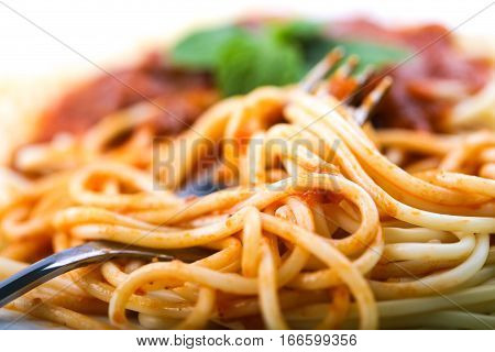 Delicious Spaghetti With Sauce