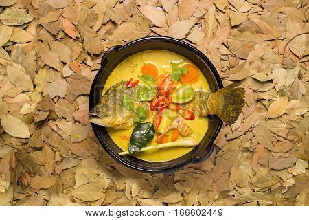 white snapper fish curry soup with tomato red chilli and lime leaf Top view