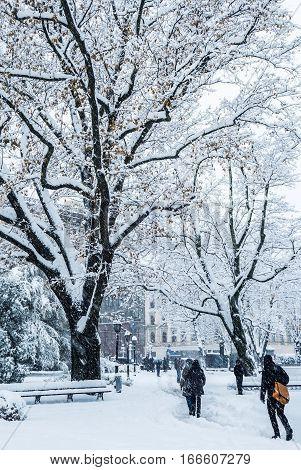 Snowy day in Riga Old city center. Riga is the capital of Latvia