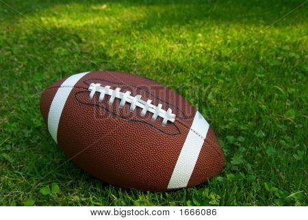 Fußball auf Gras