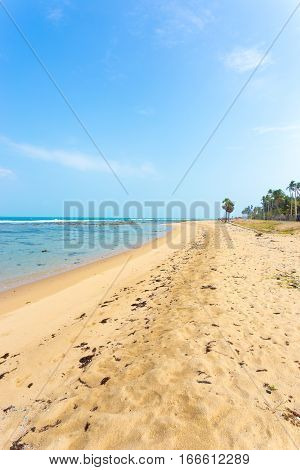 Jaffna Point Pedro Sand Beach Litter V