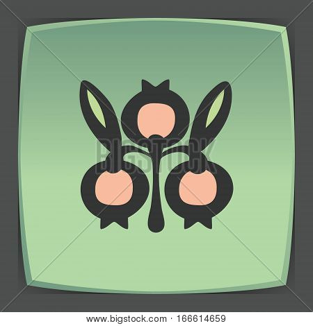 Vector outline cranberry fruit food icon on green flat square plate. Elements for mobile concepts and web apps. Modern infographic logo and pictogram.