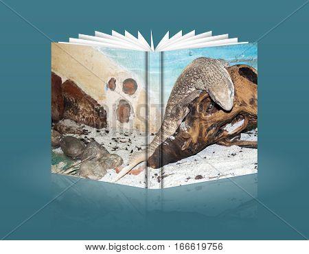 Book Of A A Cobra Coiled