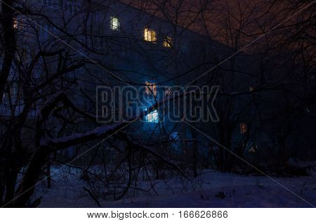 Several lightened windows in a dwelling house surrounded by dark tree branches covered in snow on a dim winter night