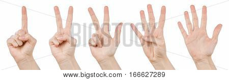 Hand gestures counting from 1 to 5. Counting hands on the finger of one to five isolated on white background.