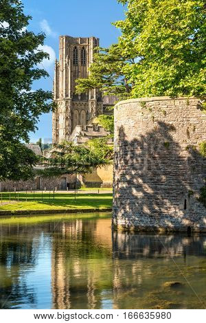 View to Wells cathedral from Bishop's Palace moat.