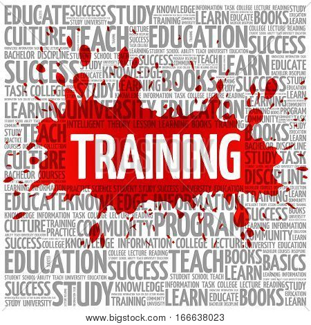 TRAINING word cloud , education concept background