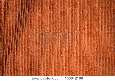 Corduroy Background In Close Up