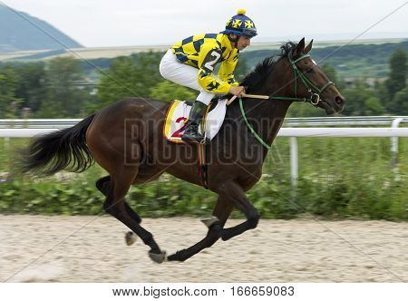 Horse race for the traditional prize Bolshoi Letni in Pyatigorsk,the largest in Russia.