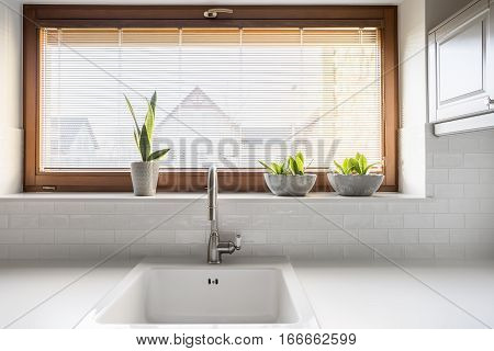 Kitchen With Sink And Window
