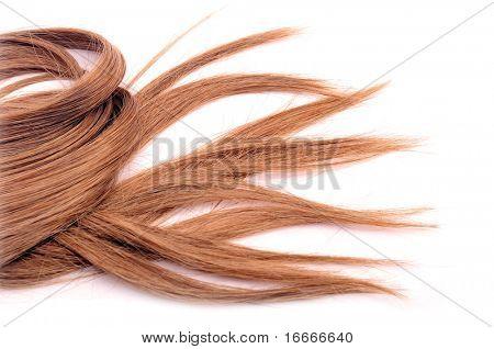 Estilo de cabello largo Castaño en fondo blanco aislado