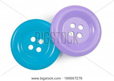 Bule And Purple Clasper