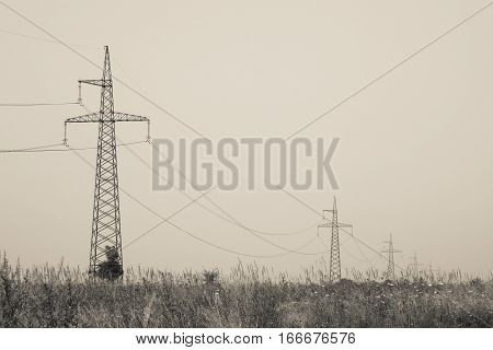 High voltage powerline across the boundless summer meadow