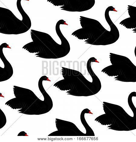 Black bird seamless pattern. Wildlife background. Swimming swans couples