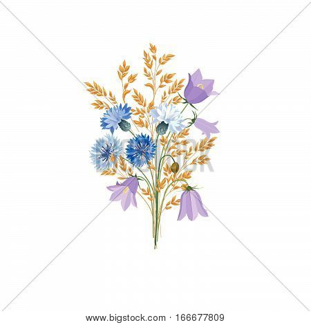 Flowers isolated. Floral summer bouquet. Meadow nature decor with bluebells and blue cornflowers
