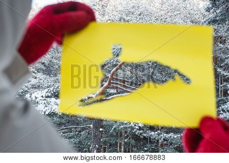 Winter Forest Through Hare Stencil Cut Out from Yellow Paper in Female Hands. Concept of Forest Dwellers.