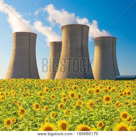 Nuclear power plant Dukovany with sunflower field, Czech Republic