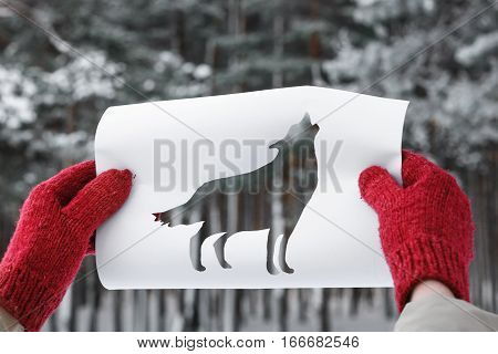 Winter Forest Through Wolf Shape Cut Out from Paper. Concept of Forest Dwellers.