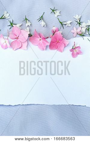 Spring floral background with white paper and white lobelia