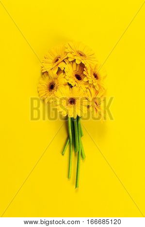 Bunch of fresh beautiful yellow gerbers on yellow background. Top view. Flat lay. Spring concept.