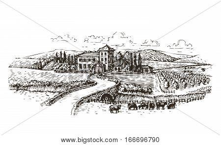 Farm, agriculture or vineyards sketch. Vintage landscape vector illustration isolated on white background