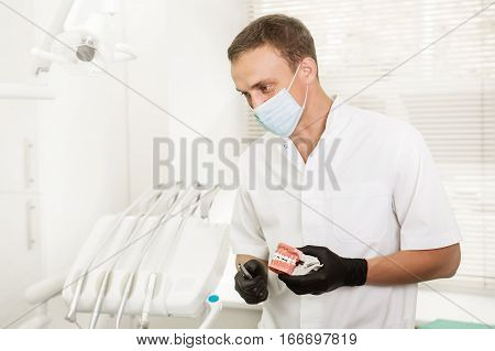 Dentist holding dental jaw model and looks away. Work at the dental clinic