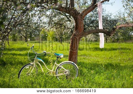 Vintage bicycle standing in the fresh green grass under flowering tree on which hangs the nice shawl in the spring garden at the sunny day