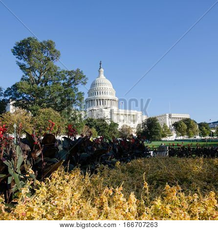 Washington Dc, Usa - October 23, 2016: Capitol Hill Washington Dc Rising Above The Flowers