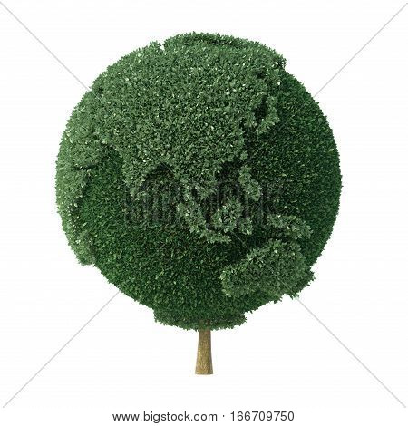 Topiary bush shaped as the Earth facing Asia