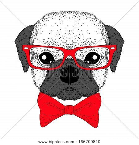 Cute french bulldog boy portrait with bow tie, glasses. Hand drawn dog face, anthropomorphic fashion pug illustration for t-shirt print, kids greeting card, invitation for pets party.