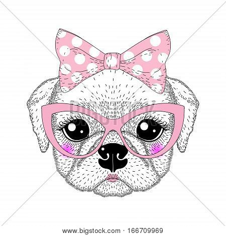 Cute pug portrait with pin up bow tie , kat eyes glasses. Hand drawn dog face, anthropomorphic fashion animal cartoon illustration for t-shirt print, kids greeting card, intitation for pets party.