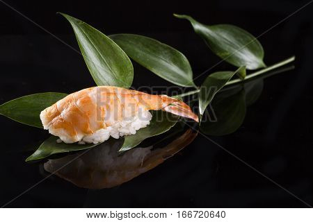 One sushi with shrimp on a black background