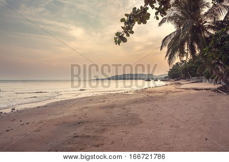 Deserted tropical beach landscape during sunset with beautiful scenic view on sea and coastline with palm trees and sunset sky