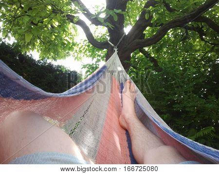 Garden Hammock Tree Feet Barefoot Relax Work