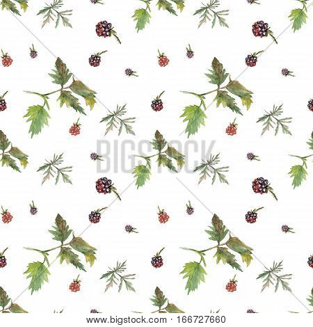 Red and violet blackberries on white background. Watercolor hand made. Seamless colorful pattern. Could be used for textile or in design