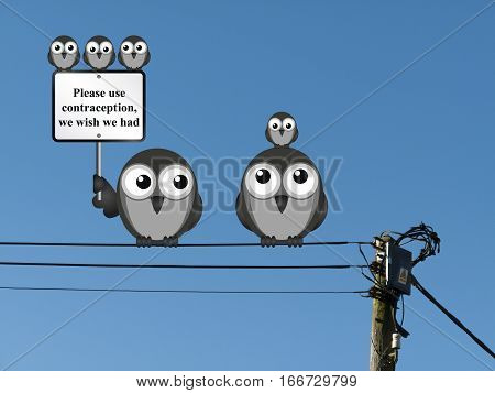 Comical family of birds with use contraception message perched on electrical cables