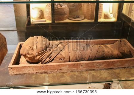 Italy Florence - October 02 2016: view of the child mummy in the National Archaeological Museum of Florence on October 02 2016 in Tuscany Italy.