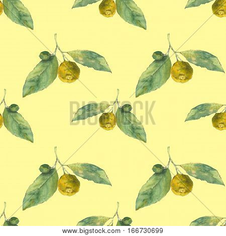 Clementines. Citrus on yellow background. Seamless watercolor pattern. Could be used for textile or in design