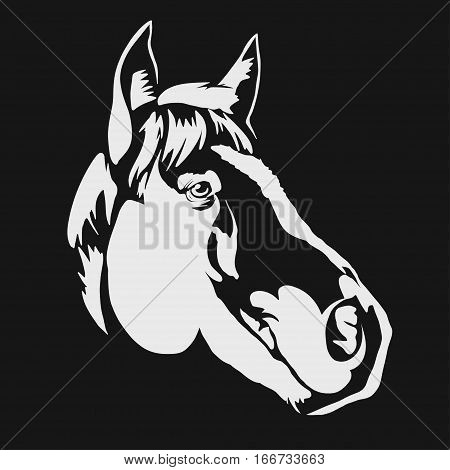 Horse head profile design on a black background, graphic logo template. Horse head silhouette outline for stable, farm, race emblem. vector