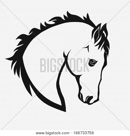 Horse head profile design on a white background, graphic logo template. Horse head silhouette outline for stable, farm, race emblem. vector