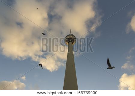 TV Tower or Fernsehturm with birds at sunset located on the Alexanderplatz in Berlin Germany